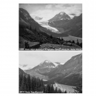 peyto_1896-2011_thumb